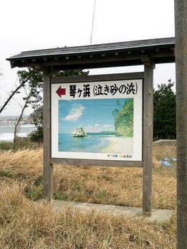 琴ヶ浜2.jpg