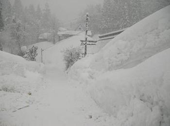 柏崎の雪.jpg