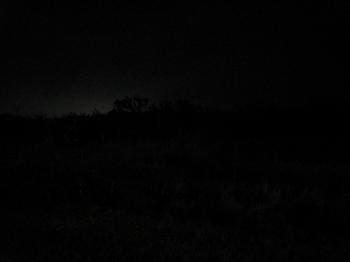 闇の朽木キャンプ場.jpeg